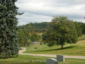 Rolling hills of Allegheny Cemetery